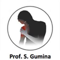 Prof. Stefano Gumina